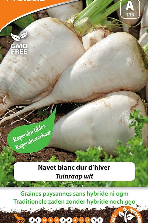 Protecta Navet blanc dur d'hiver