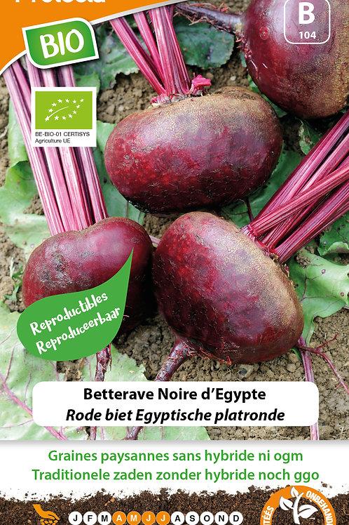 Protecta Betterave Noire d'Egypte BIO