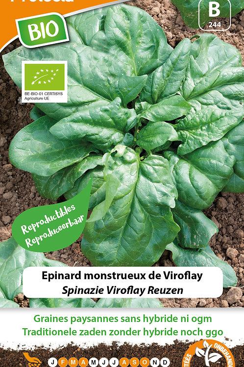 Protecta Epinard Monstrueux de Viroflay BIO