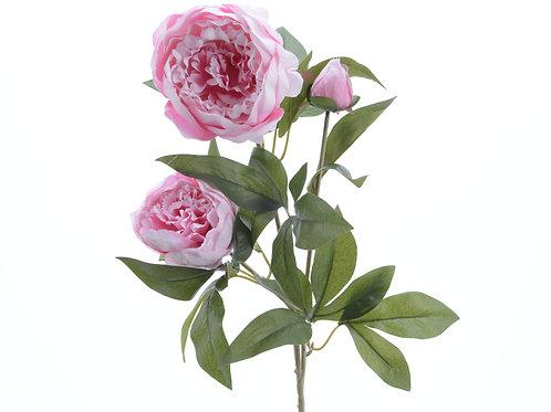 Branche rose pivoine en soie avec 3 fleurs