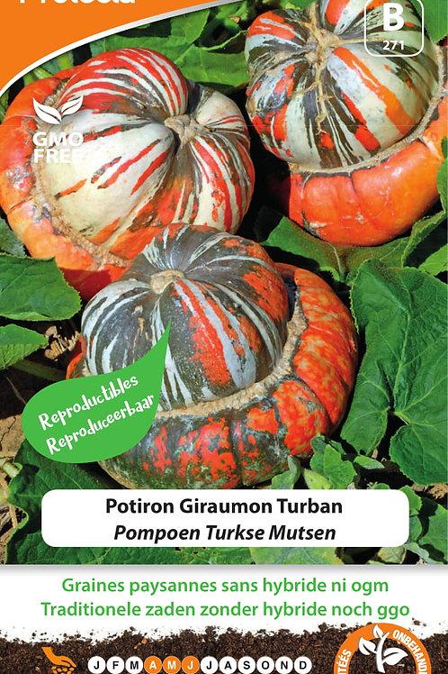Protecta potiron Giraumon Turban