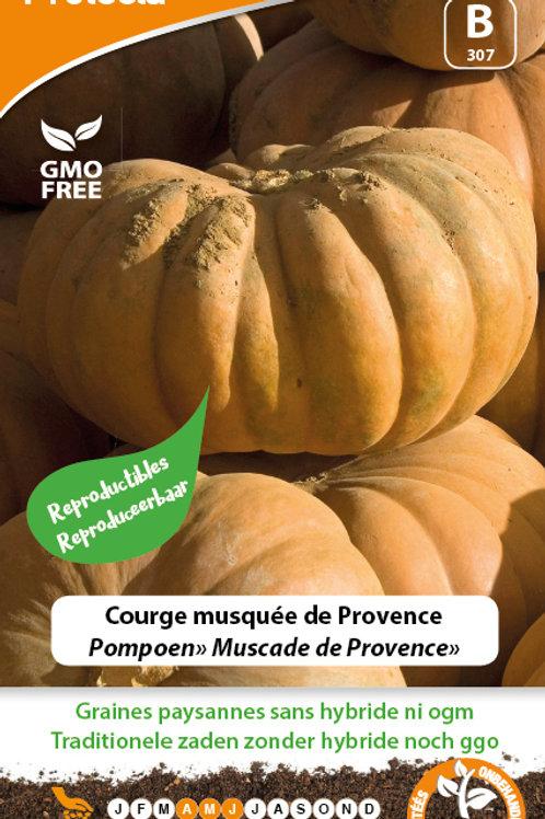 Protecta courge musquée de Provence