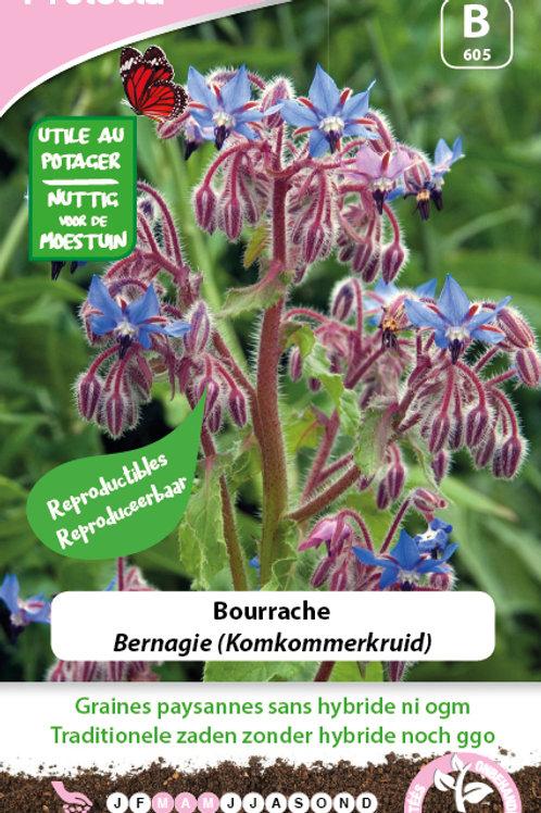Protecta Bourache