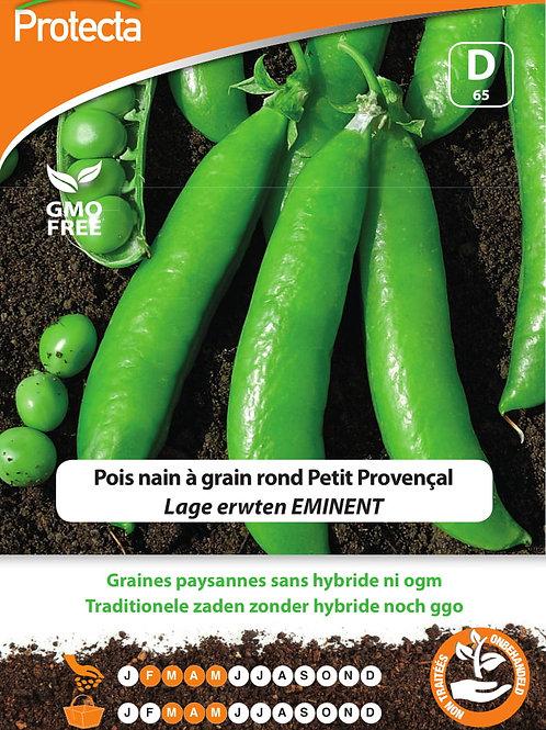 Protecta pois nain à grain rond petit Provençal