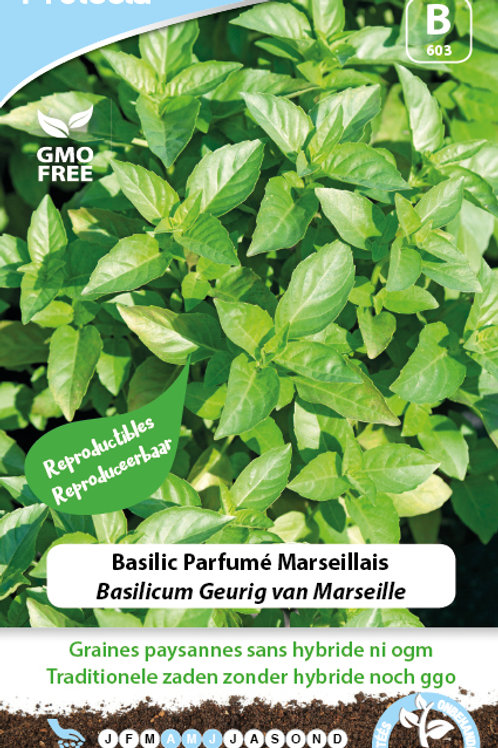 Protecta Basilic parfumé Marseillais