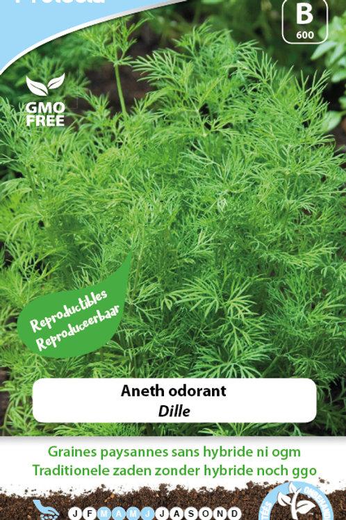 Protecta Aneth Odorant