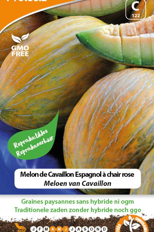 Protecta Melon de Cavaillon Espagnol à chaire rose