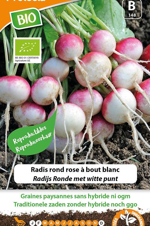 Protecta radis rond à bout blanc BIO