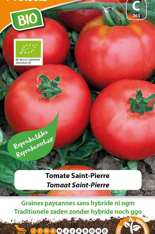 Protecta tomate Saint-Pierre BIO
