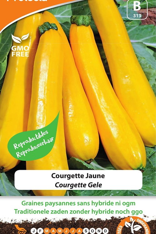 Protecta courgette jaune