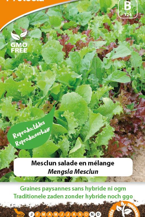 Protecta Mesclun salade en mélange