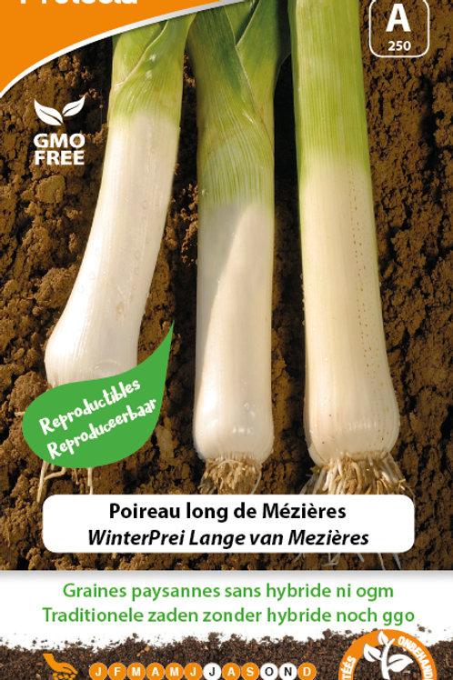 Protecta poireau long de Mézières