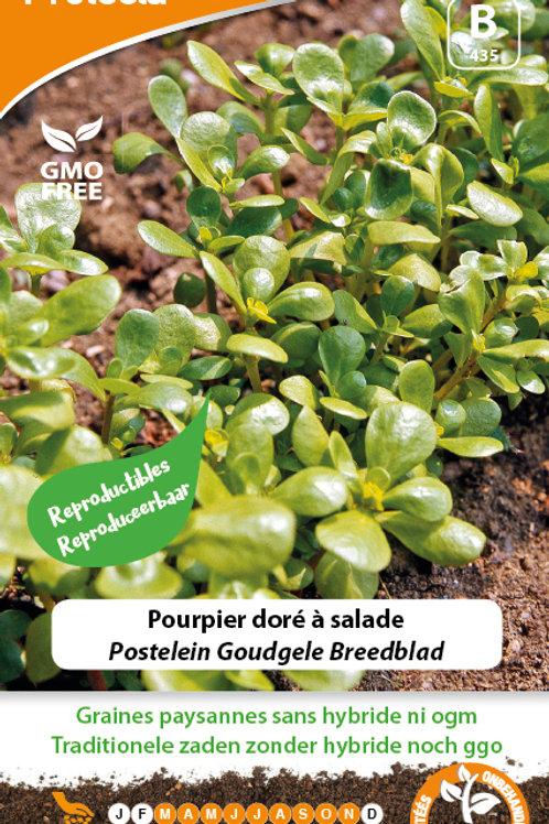 Protecta pourpier doré à salade