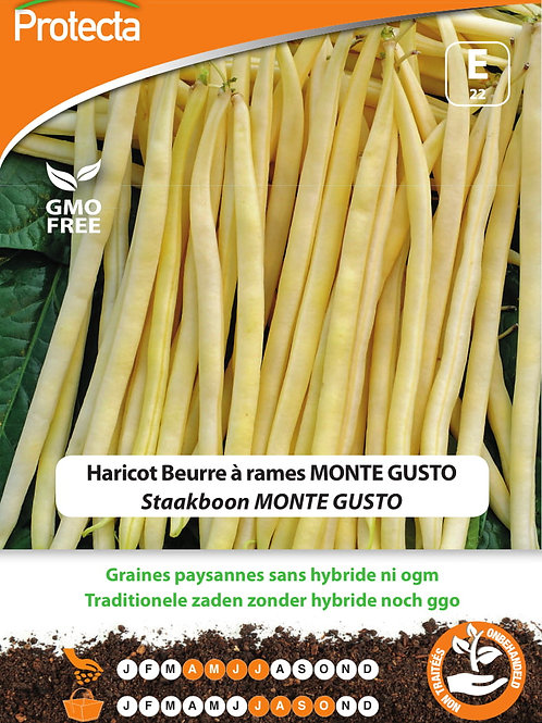 Protecta haricot beurre à rames Monte Gusto