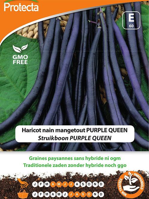 Protecta nain mangetout Purple Queen