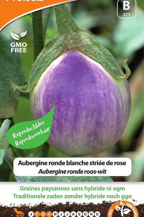 Protecta aubergine ronde blanche striée de rose