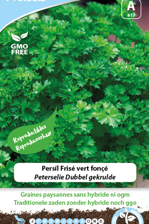 Protecta Persil frisé vert foncé