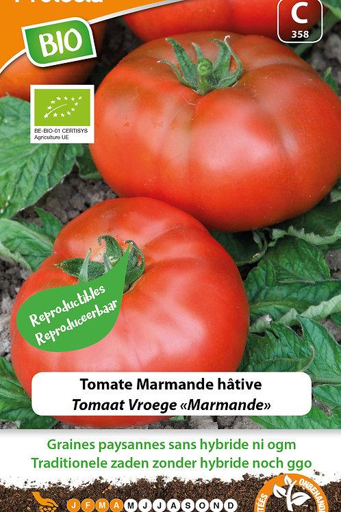 Protecta tomate Marmande hâtive BIO