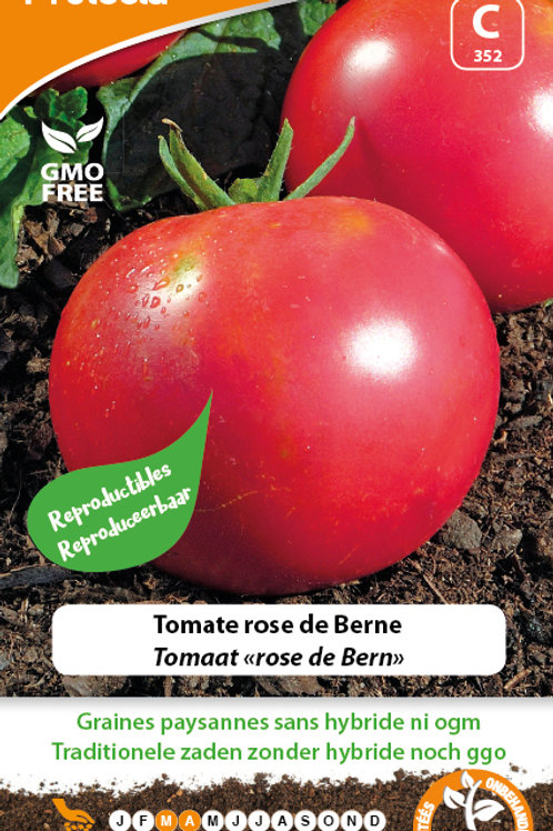 Protecta Tomate rose de Berne