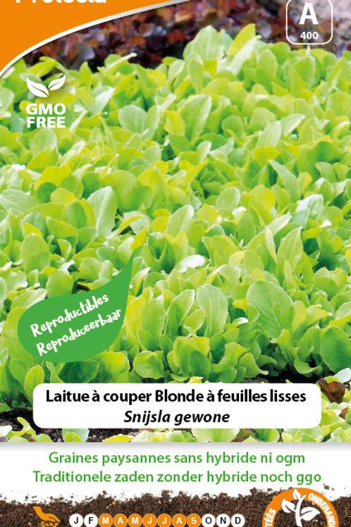Protecta laitues à couper Blonde à feuilles lisses