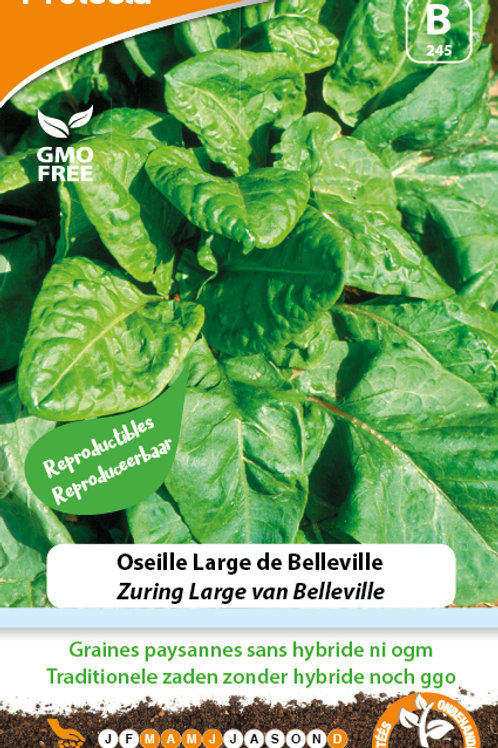 Protecta Oseille Large de Belleville
