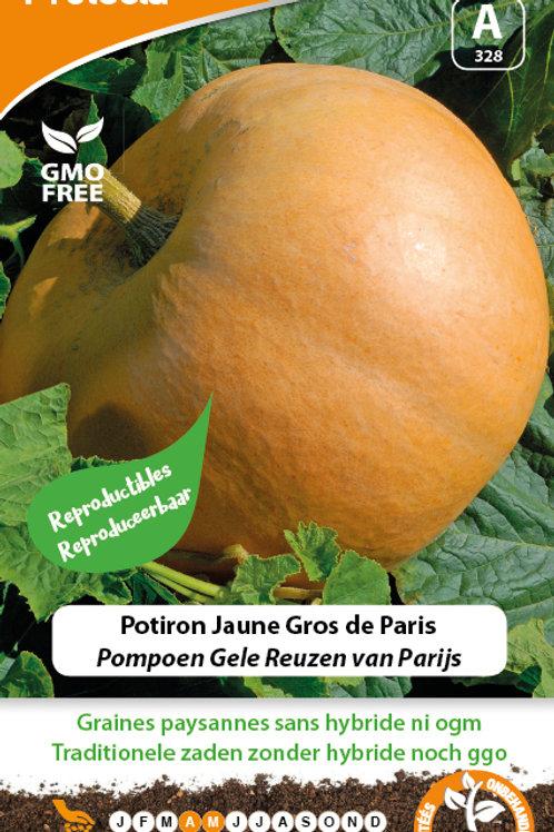 Protecta Potiron jaune gros de Paris
