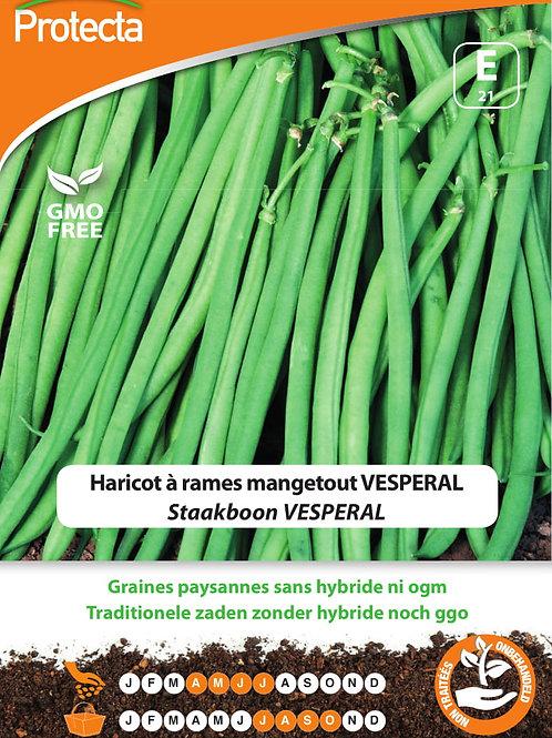 Protecta haricot à rames mangetout Vesperal