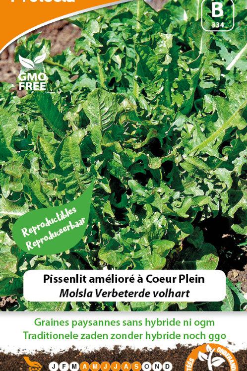 Protecta Pissenlit amélioré à Cœur Plein