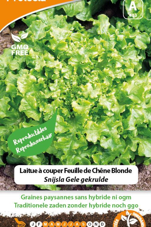 Protecta Laitue à couper feuille de chêne blonde