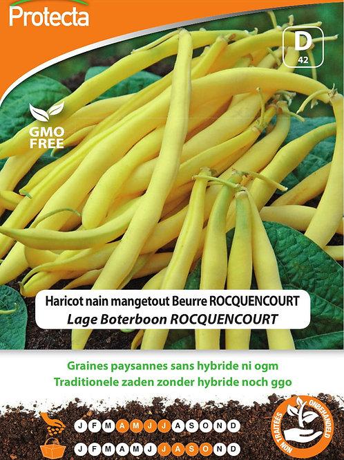 Protecta haricot nain mangetout beurre Rocquencourt
