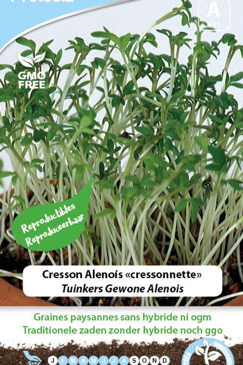 Protecta cresson Alenois (cressonnette)
