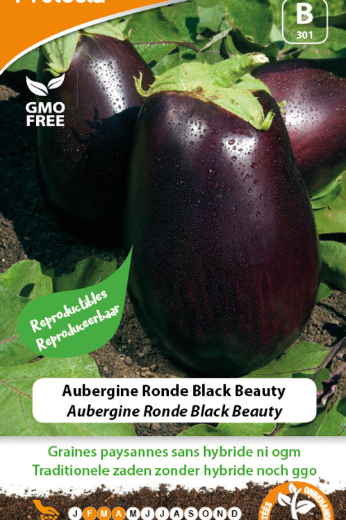 "Protecta aubergine ronde ""black beauty"""