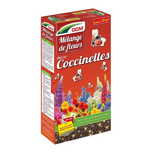 DCM mélange de fleurs coccinelles 0.520Kg