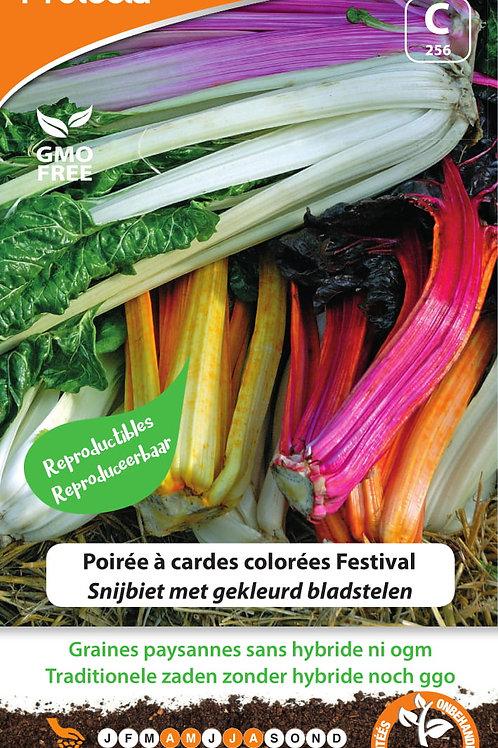 Protecta Poirée à cardes colorées Festival