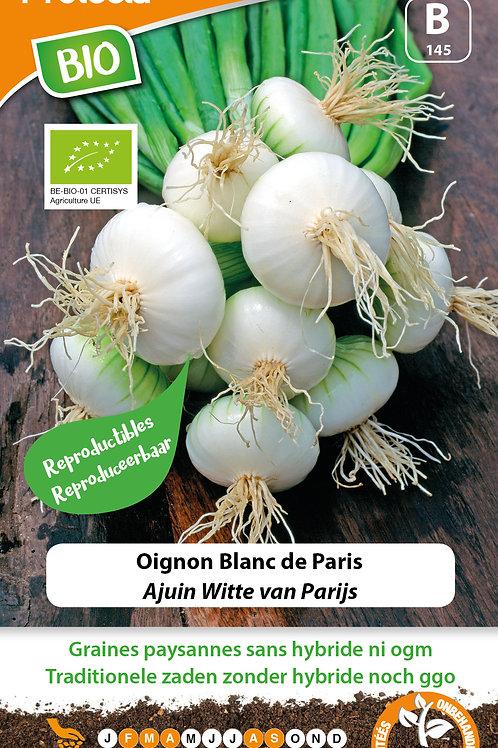 Protecta oignon blanc de Paris BIO