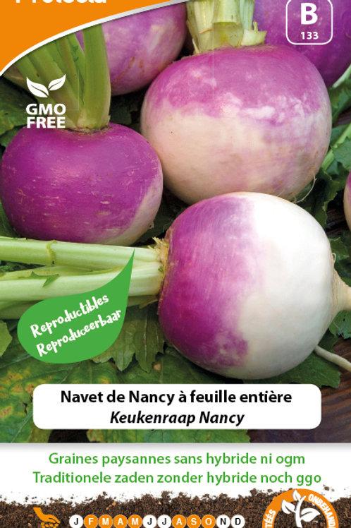 Protecta Navet de Nancy à Feuille entière
