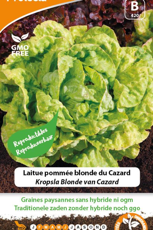 Protecta laitue pommée blonde du Cazard