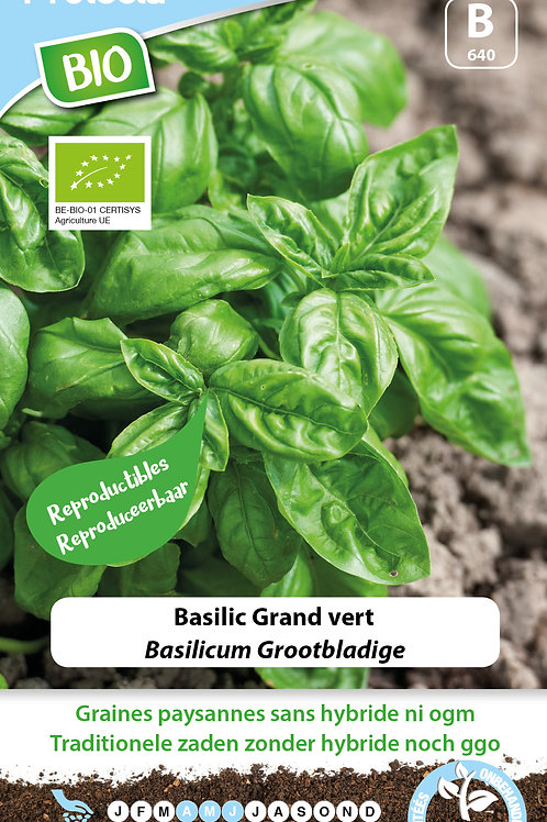 Protecta Basilic grand vert BIO
