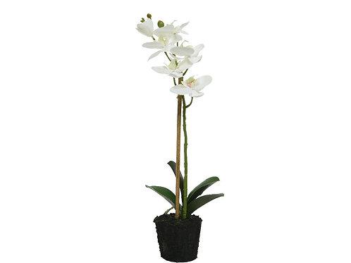 Orchidée en polyester (blanc)