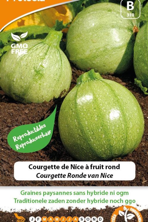 Protecta courgette de Nice à fruit rond