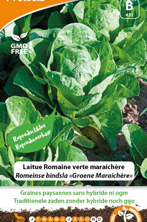 Protecta Laitue Romaine verte maraichère
