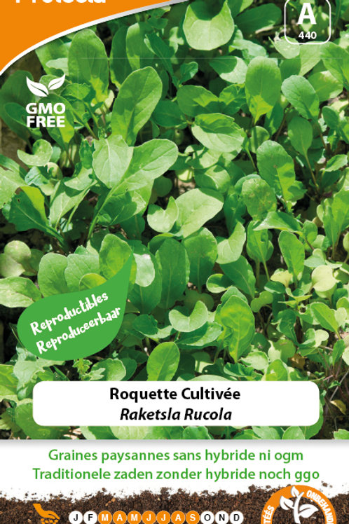 Protecta Roquette cultivée