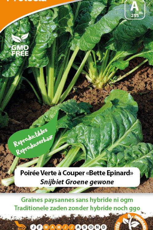 Protecta poirée verte à couper (bette épinard)