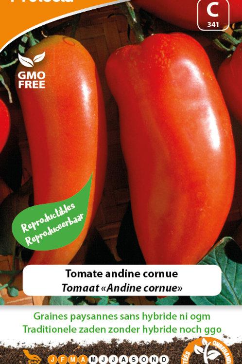 Protecta tomate andine cornue