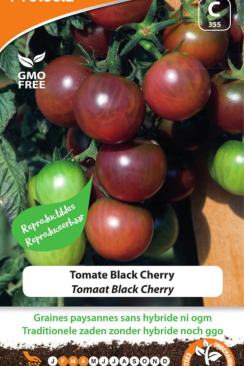 Protecta Tomate Black Cherry