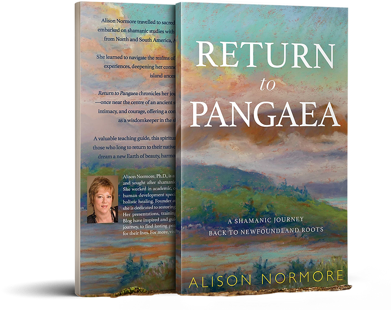 return-to-pangaea_alison-normore.png