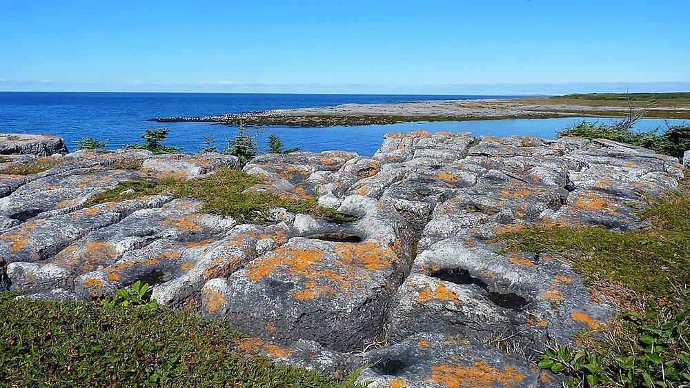 Limestone terraces at Port aux Choix