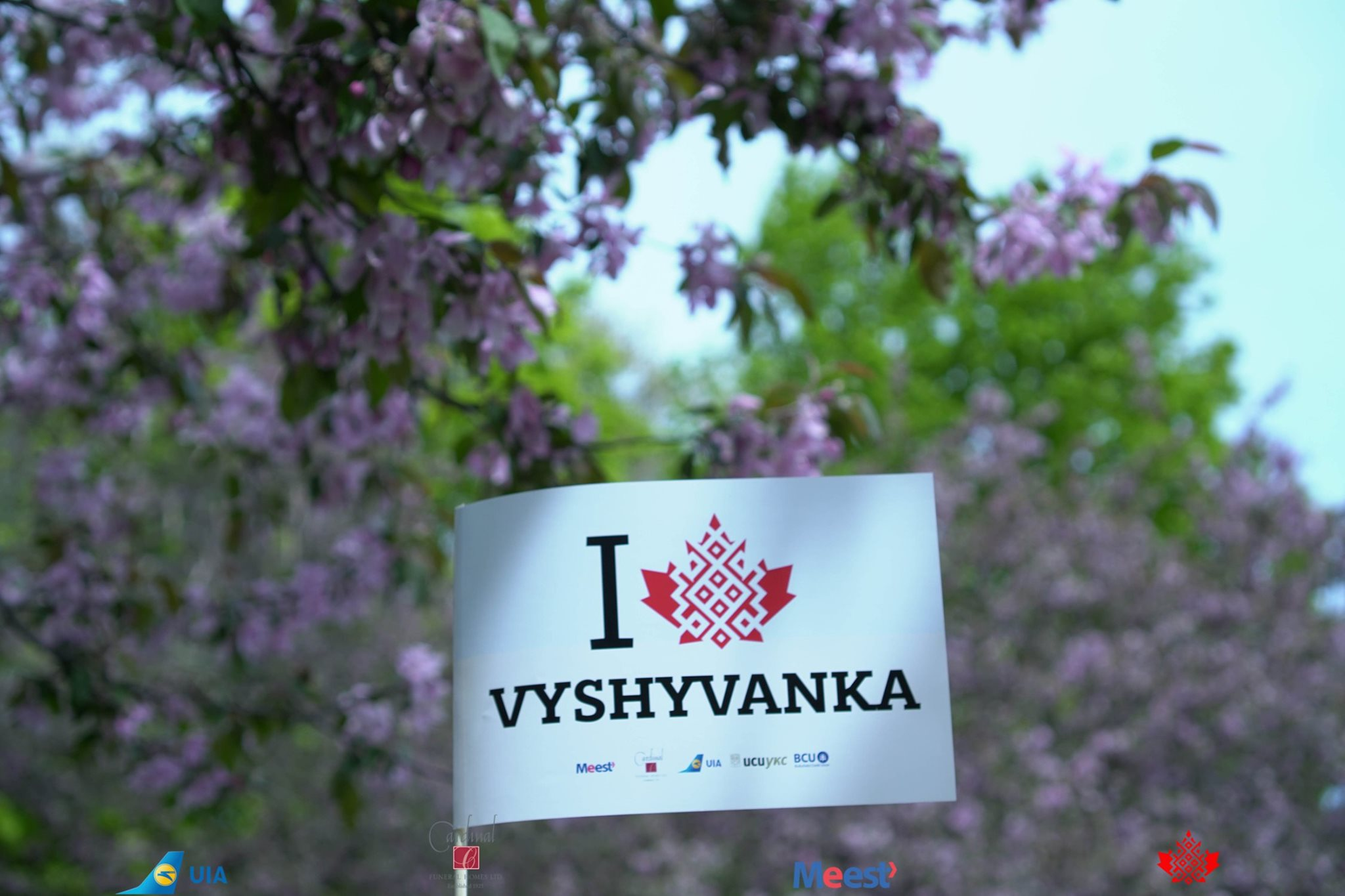 I love Vyshyvanka - New Logo