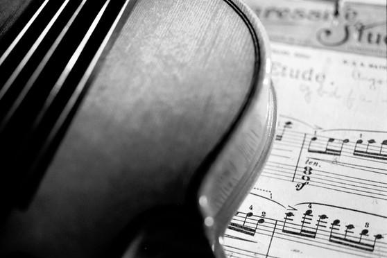 ViolinDiag.JPG