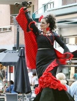 flamenco%20op%20hoge%20stelten%20275%20x